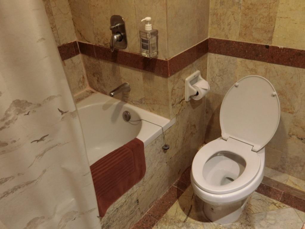カオサンのホテルのバスルーム