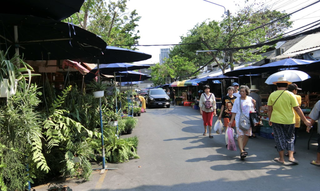 チャトゥチャック市場の植物系のお店ゾーン